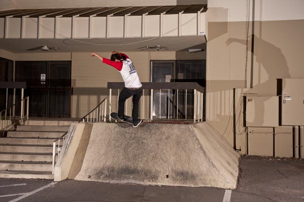 PHXamBird2 8front_feebs8