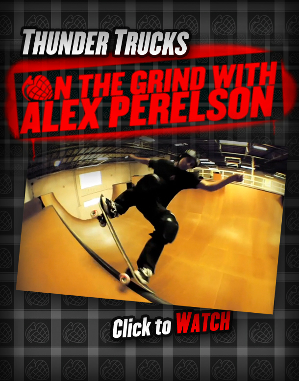 th_Perelson_flyer