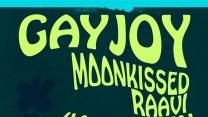 Skate Concert Event from GayJoy: Brooklyn Queer Community Platform