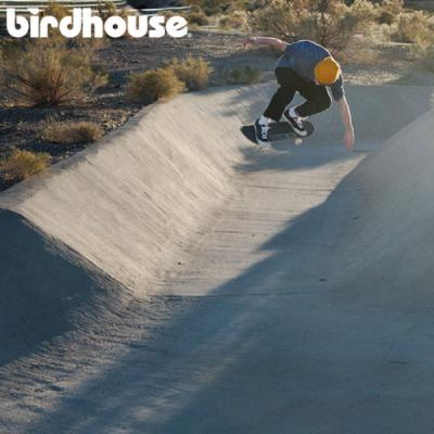 New from Birdhouse
