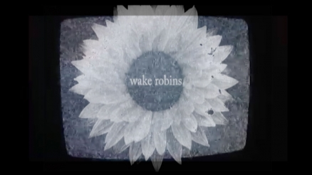 "Wake Robins' ""Wheel of Sharp Weapons"" Video"