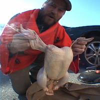 "P-Stone's ""Ol' Beer Can Chicken"" Video"