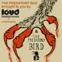 The Predatory Bud