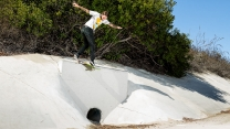 "Riley Hawk's ""Shep Dawgs 5"" Part"