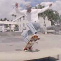 "Converse x Polar ""LA Days"" Video"
