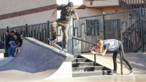 Skatepark Round-Up: Element Photos