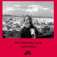 "Nike SB's ""Not Here By Luck 
