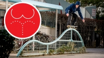 """The Golden Ratio"" Video"
